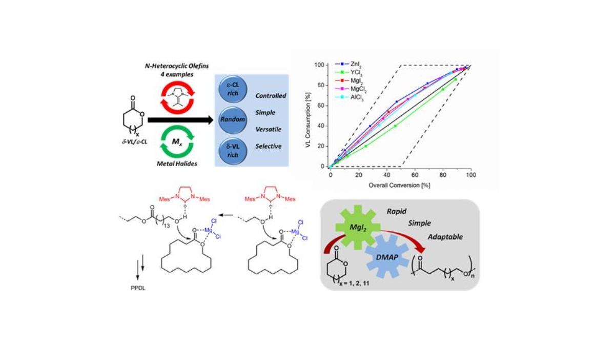 Cooperative Polymerization Catalysis